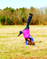 2012-03-09 Cartwheel